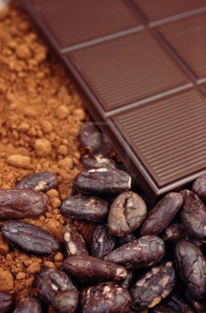 Il Cacao Crudo